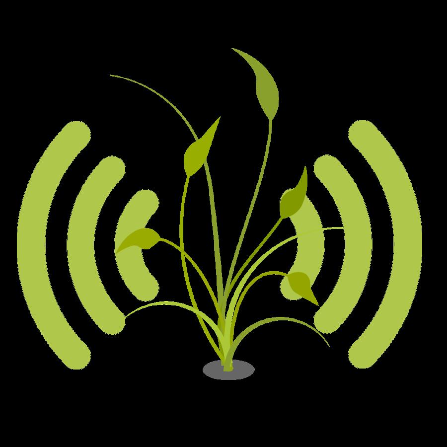 logo monitor huerto